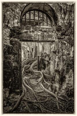 la prison emprisonnée 4 (Petit Canal - Guadeloupe) tirage dibond® 40 x 60 cm