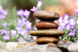 L'instant Zen