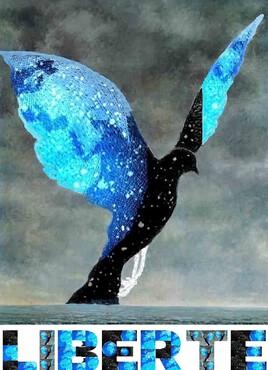 revisite de la colombe de Magritte.. 2