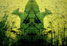l'Ogre des marais de Juvisy