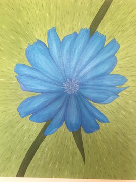 Fleur d'ufa