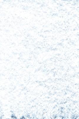 Avalanche E1v