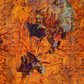 Les iris, couleur orange