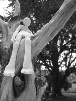 arbre a rêve