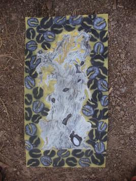 l'ancetre baoabab