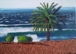 Palmier sur une plage du Maroc