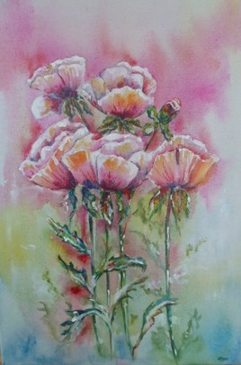 """fleurs """" Coquelicots """""""