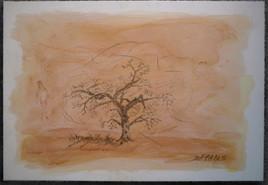 L'arbre pendu