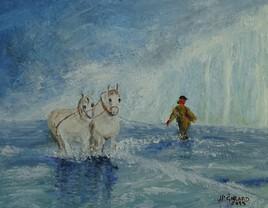 2019-Les chevaux à Malo-les-bains