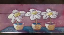 Trois petits pôts de fleurs