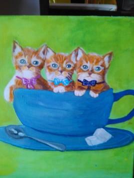 3 chatons bizarres !