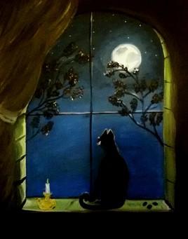Regard sur la nuit