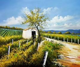 Un été dans les vignes - ©Bruni Eric. Tous droits réservés