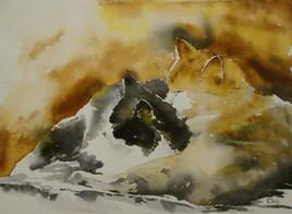 portrait de votre chat ou chien a l aquarelle