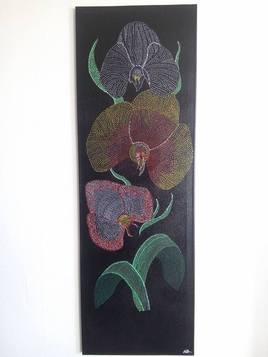 les orchidées d'émilie