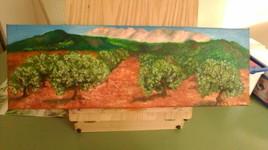 Les oliviers de Ste Victoire