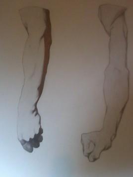 Bras d'homme, vertical.