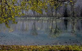 Automne au lac