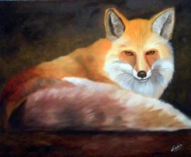 Le renard tranquille