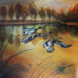 Vole de canard sauvages