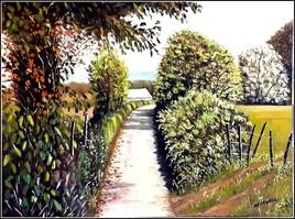 Chemin de prat de coye Buzy . Nouvelle-Aquitaine..