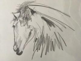 Une idée du cheval