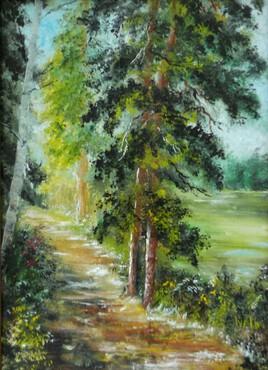 Cèdres sur le sentier