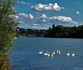 promenade en famille sur la Seine..