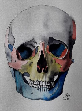 Primary colors skull