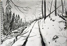 Chemin neigeux