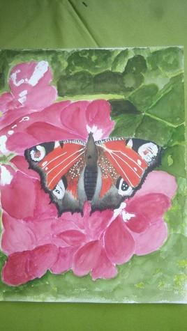 papillon pour Dominique