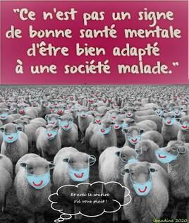 effet mouton ou effet contravention ?