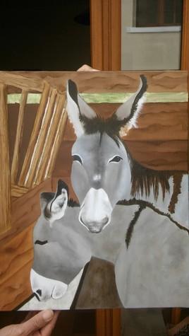 les ânes toulonnais
