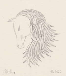 Portrait chevalin