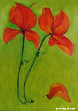Iris Rouges