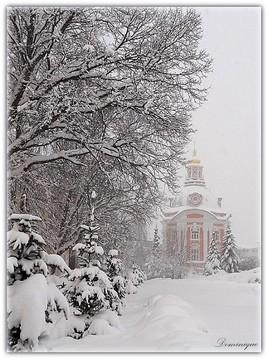 Dans le silence de l'hiver.