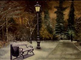 un parc la nuit