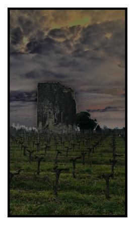 Ruine au milieu des vignes
