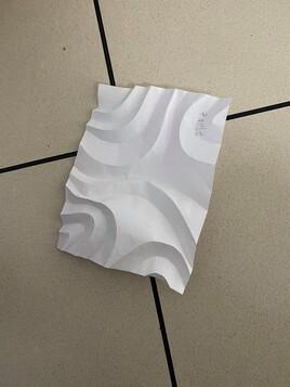 Sculpture sur papier