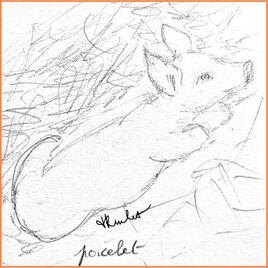 Animaux de la ferme / Drawing Farm animals