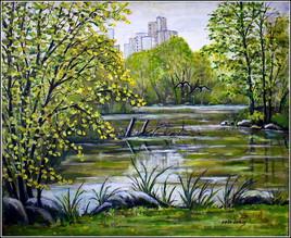 L'étang du parc nord au Ulis