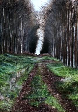 Forêt d'Ermenonville