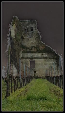 à l'intérieur de la ruine au milieu des vignes