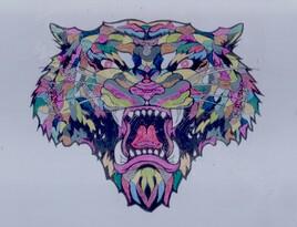Tigre 34