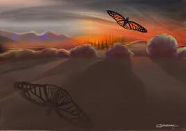 Le papillon dans le soleil couchant