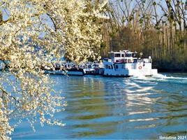 le printemps sur la Seine ..