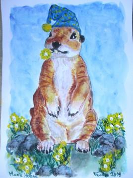 Marmotte tigrée