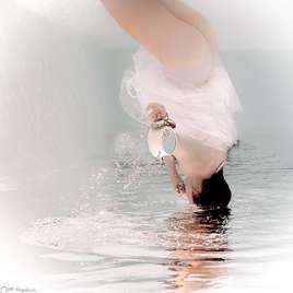 Alice's dive