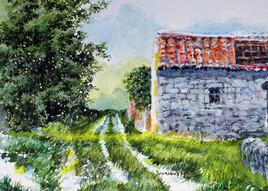 la maison abandonnée
