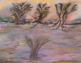 paysage avec filtre